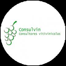 Consulvin-logo